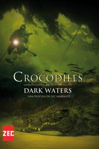 Crocodiles in Dark Waters